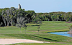 A golf green at Bald Head Island Club